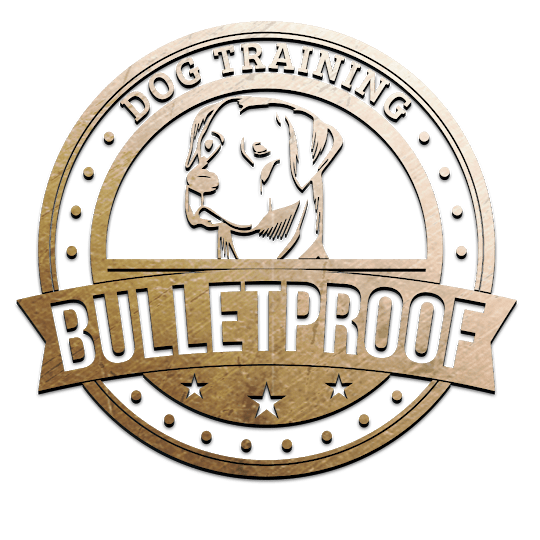 Bullet Proof Dog Training